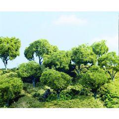 3 grote hardhouten bomen  - voor modelbouw - Woodland scenics TK25